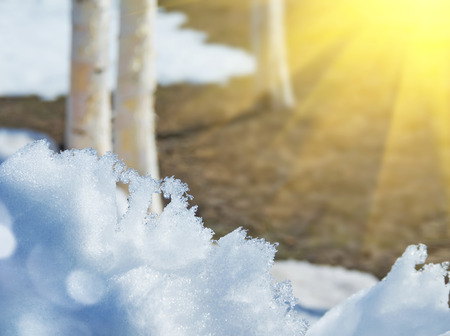 thawed: Spring landscape with melting snow and thawed in the sun Stock Photo