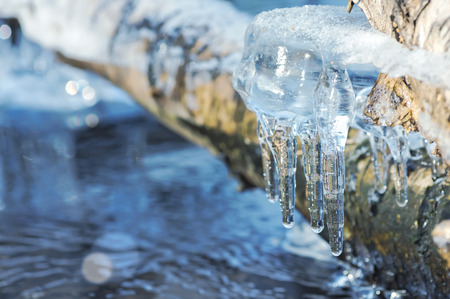 spruit: Spring landscape with transparent icicles on water Stock Photo