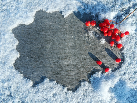 red mountain: Winter background with snow-covered table and  red mountain ash
