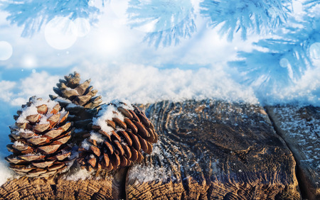 Winter background with cones on snowy wooden table Stock Photo