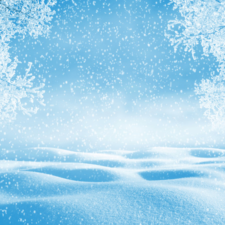 snowdrifts: Winter background. Christmas landscape with snowdrifts and tree branches in the frost
