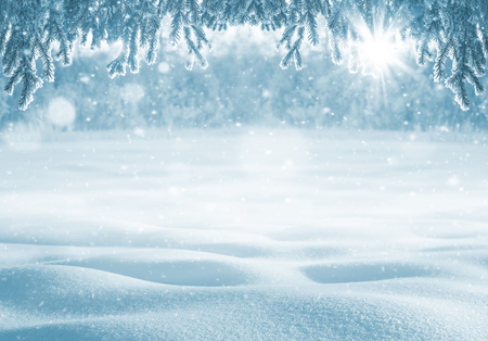 snowdrifts: Winter bright background. Christmas background with deep snowdrifts and branches of trees in frost