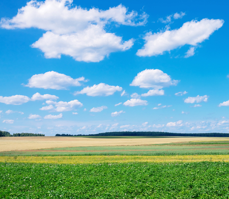 Rural scenic landscape with  blue sky with clouds. Stock Photo