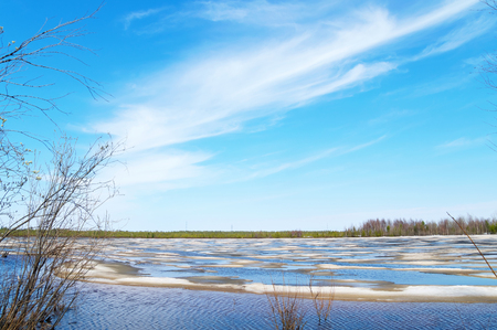 crack willow: Spring landscape. Lake with melted ice and beautiful sky with clouds. Stock Photo