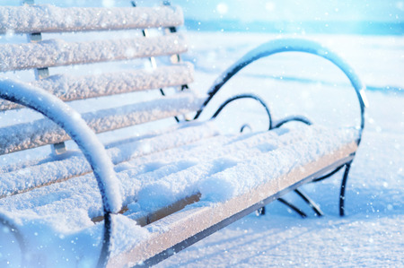 Snow-covered benches in the park in winter Standard-Bild