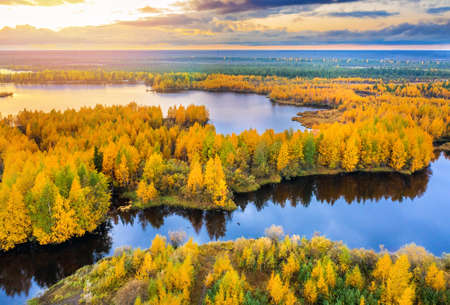 Colorful autumn landscape. Forest lake with autumn forest. Western Siberia Standard-Bild