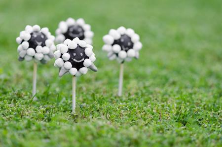 Sheep cake pops on grass