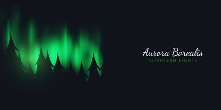 Night Sky, Aurora Borealis, Northern Lights Effect on dark background behind the forest. Realistic Colored polar lights