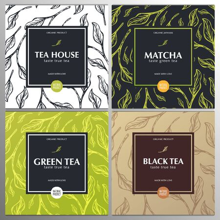 Collection tea banners. Green and Black tea, Matcha Japanese tea. Hand draw leaves on the background. Vector Illustration