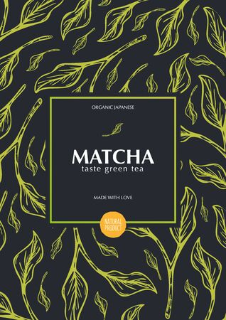 Matcha green tea. Organic Japanese Product. Banner with hand draw leaves on the background. Illustration