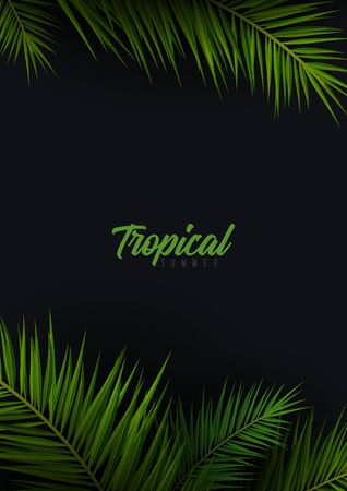 Summer Tropical palm leaves. Exotic palms tree. Dark Floral Background.