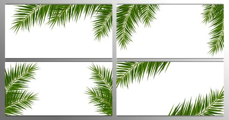 Set of Summer Tropical palm leaves. Exotic palms tree. Floral Background