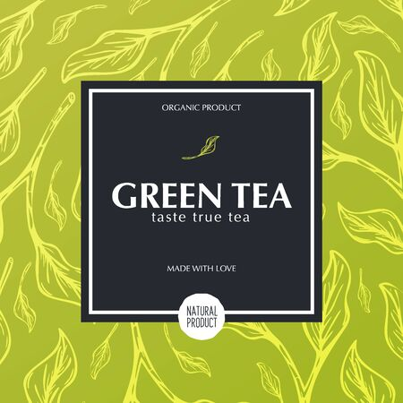 Green tea banner with hand draw leaves on the background  イラスト・ベクター素材
