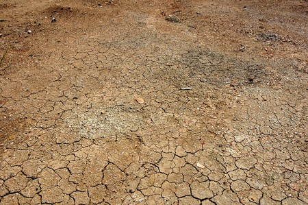 the ground: Dry land because of world global warming