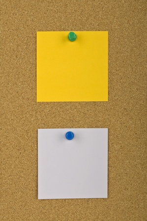 Two blank notes pinned on the textured pin board photo