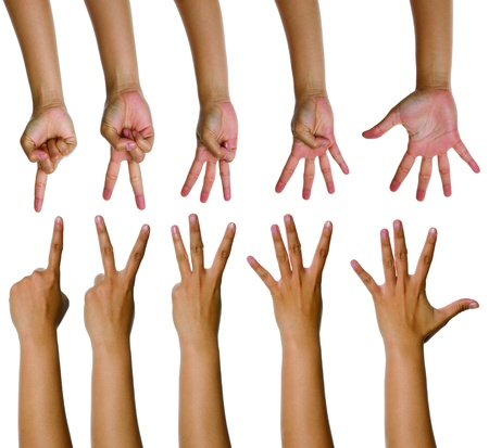 Set of woman counting hands isolated over white background Stock Photo - 9913231