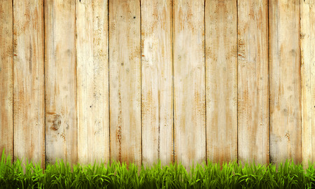 Background of wooden fence and green grass Stockfoto