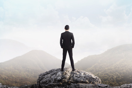 mountain valley: Business man standing on the top of the mountain looking at the valley. Business success concept