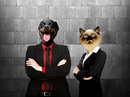 Formal wear business man and woman with dog and cat head