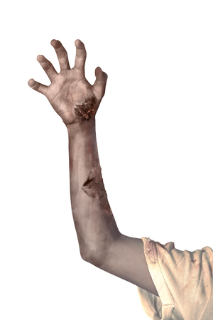 Zombie hand isolated over white background. Halloween concept Фото со стока