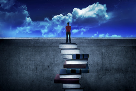 person looking: Back view business person looking the city, standing on the top of the book. Education for success concept