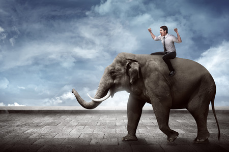 difficult lives: Asian business man riding elephant sit on it back Stock Photo