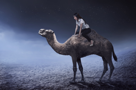 east riding: Image of asian business woman riding camel at the desert