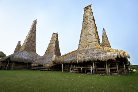 Image of traditional house of sumba tribe in indonesia