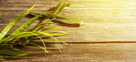Closeup view of cross shape of palm leaf and palm branches with ray in wooden background. Palm Sunday concept