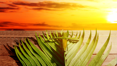 Cross shape of palm leaf and palm branches on wooden table with rays of sunset background. Palm Sunday concept Stock Photo