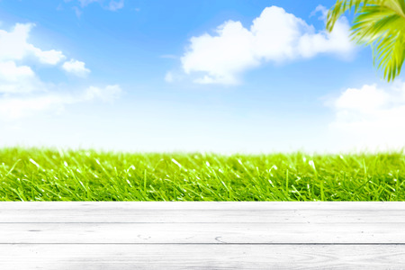 Wooden table with green grass view and palm branches on blue sky background