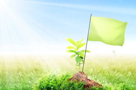 Young plant and small pole with blank green flag on fertile soil in meadow with sunlight and blue sky background. Earth day concept