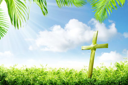 Cross shape of palm leaves on the green grass with palm branches and blue sky background. Happy Easter