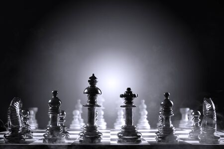 Whole group of white chess piece and black chess piece on the chessboard