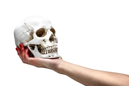 Hand holding human skull isolated over white background Stock Photo