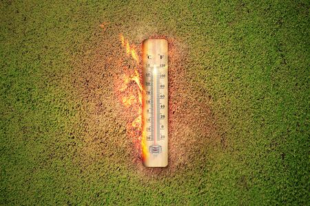 Thermometer with high temperature on the meadow with glowing sun background. Heatwave concept 免版税图像