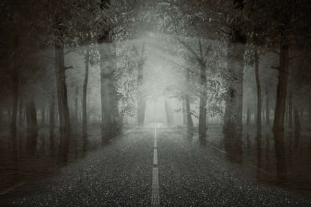 Haunted street inside the forest with a dramatic scene background. Halloween concept Banco de Imagens