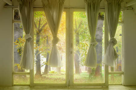 Windows with the curtain in an abandoned house with a forest background