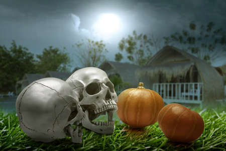 Human skull and pumpkin on the grass with the night scene background