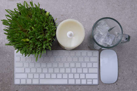 Close up view of millet grass plant in the pot with empty glass with ice cubes and the keyboard on the desk