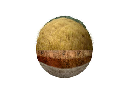 Underground soil layer of cross-section earth with savanna on the top. Environment concept