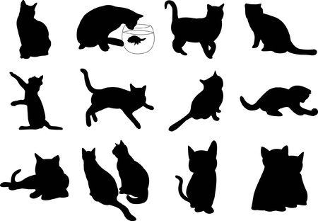 Illustration cats silhouette Vector