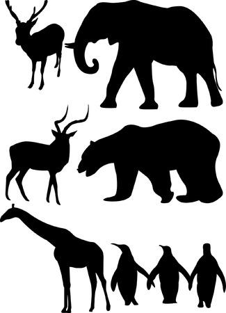 siloette: deer elephant giraffe penguin gazelle polar bear Illustration