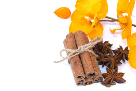 Cinnamon sticks, star anise and orchid isolated over a white background photo