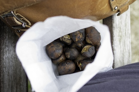 chestnut in a sacket durin a market photo