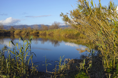 spezia: bozzi saudini a little lake in Sarzana near La Spezia