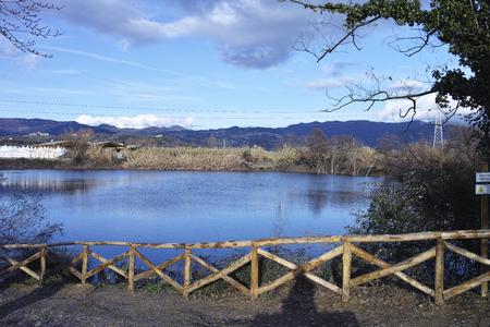 sarzana: bozzi saudini a little lake in Sarzana near La Spezia