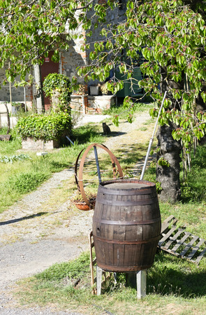 vineyard plain: detail of a wooden barrel in a meadow