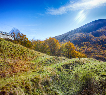 appennino: photo of autumn foliage and tree in italian appennino