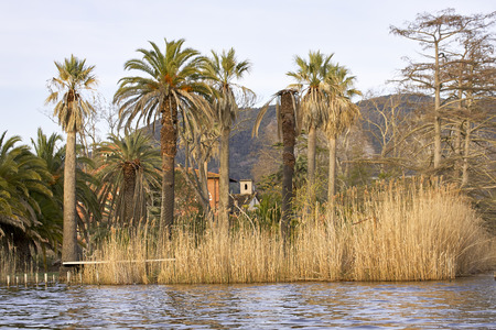 detail of beautiful villa in massaciuccoli lake, italy Stock Photo
